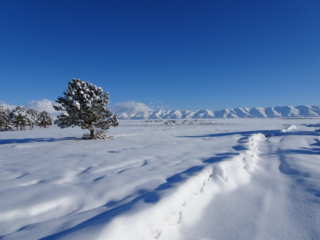 Sevan lake after snowfall